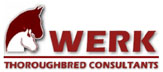 Werk Thoroughbred Consultants Logo